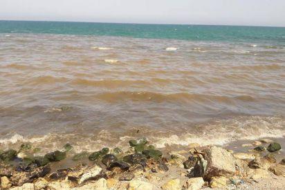 60% من شواطئ قطاع غزة تحت تأثير المياه العادمة