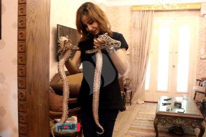 نيفن سامي.. روضت التمساح وربت الأسد!