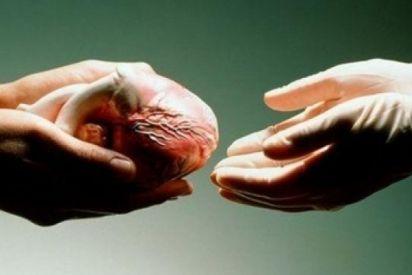 التبرع في الأعضاء بين موقف الدين والمجتمع