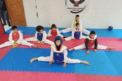 رياضة التايكوندو في فلسطين