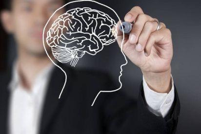 عقل المبتدئ أفضل من عقل الخبير!